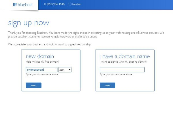 bluehost-pick domain